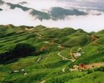 Lạng Sơn: Làm giàu từ trồng cây ăn quả